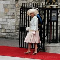 Heidi-Busetti-al-Royal-Wedding-per-Donna-Moderna-5